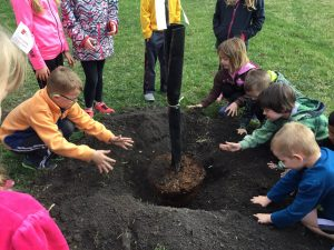 Central Elementary Students Planting Tree